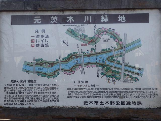 元茨木川緑地~ねじりマンポ~西河原公園: 箕面里山のブログ